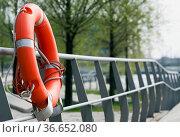 Rettungsring am Zugang zum Wasser in der Hamburger Hafencity, Deutschland... Стоковое фото, фотограф Zoonar.com/Karl Heinz Spremberg / easy Fotostock / Фотобанк Лори