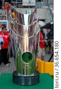 DFB-Meisterpokal des Fußballmeisters der 3.Liga Saison 2013-14 1.... Стоковое фото, фотограф Zoonar.com/Axel Kammerer / age Fotostock / Фотобанк Лори
