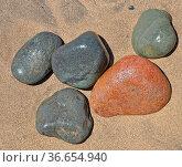 Kiesel, Stein, steine, Sandstrand, sand, strand, objekt, struktur... Стоковое фото, фотограф Zoonar.com/Volker Rauch / easy Fotostock / Фотобанк Лори