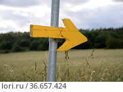 Richtung, pfeil, hinweis, richtungspfeil, gelb, bunt, landschaft,... Стоковое фото, фотограф Zoonar.com/Volker Rauch / easy Fotostock / Фотобанк Лори