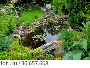 Gartenteich mit Goldfischen, Ziergarten. Стоковое фото, фотограф Zoonar.com/Bildagentur Geduldig / easy Fotostock / Фотобанк Лори
