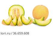 Galia Cantaloupe Melone ganz, halbiert und Stücke isoliert vor weißem... Стоковое фото, фотограф Zoonar.com/Thomas Klee / easy Fotostock / Фотобанк Лори