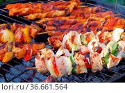 Grillen Schaschlik - barbecue shashlik 05. Стоковое фото, фотограф Zoonar.com/Liane Matrisch / easy Fotostock / Фотобанк Лори