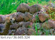 Natursteinmauer - natural stone wall 04. Стоковое фото, фотограф Zoonar.com/LIANEM / easy Fotostock / Фотобанк Лори