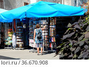 Istrien, rovinj, markt, frau, person, mensch, kroatien, marktstand... Стоковое фото, фотограф Zoonar.com/Volker Rauch / easy Fotostock / Фотобанк Лори