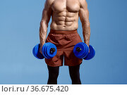 Male athlete with muscular body holds dumbbells. Стоковое фото, фотограф Tryapitsyn Sergiy / Фотобанк Лори
