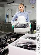 Female worker sorting sturgeons. Стоковое фото, фотограф Яков Филимонов / Фотобанк Лори