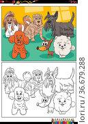Cartoon illustration of funny purebred dogs animal characters group... Стоковое фото, фотограф Zoonar.com/Igor Zakowski / easy Fotostock / Фотобанк Лори