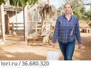 Woman farmer feeds poultry in the backyard of the farm. Стоковое фото, фотограф Яков Филимонов / Фотобанк Лори