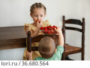 Two young girls eating strawberries in living room. Стоковое фото, фотограф Ирина Аринина / Фотобанк Лори