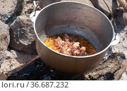 Spicy broth with beef and vegetables, camping meal. Стоковое фото, фотограф EugeneSergeev / Фотобанк Лори