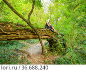 Attractive blonde woman on a tree with bunch of flowers in hand. Стоковое фото, фотограф Emil Pozar / age Fotostock / Фотобанк Лори
