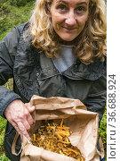 Stockholm, Sweden A woman shows off the chanterelle mushrooms she... Стоковое фото, фотограф A. Farnsworth / age Fotostock / Фотобанк Лори