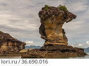 Sea stack at Bako National Parks, Sarawak, East Malaysia. Стоковое фото, фотограф Chua Wee Boo / age Fotostock / Фотобанк Лори