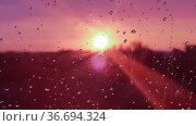 Dawn through glass in raindrops. Стоковое фото, фотограф Юрий Бизгаймер / Фотобанк Лори