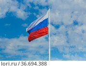 Flag of the Russian Federation. Стоковое фото, фотограф Юрий Бизгаймер / Фотобанк Лори