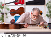 Old male repairman repairing musical instruments at workplace. Стоковое фото, фотограф Elnur / Фотобанк Лори