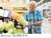 Mature senor examines Chinese cole in the vegetables section of supermarket. Стоковое фото, фотограф Татьяна Яцевич / Фотобанк Лори