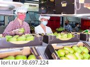 Workers sorting ripe pears at fruit storage. Стоковое фото, фотограф Яков Филимонов / Фотобанк Лори
