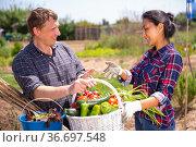 Conversation of good neighbors during meeting on field. Стоковое фото, фотограф Яков Филимонов / Фотобанк Лори