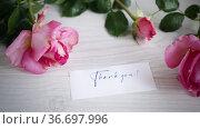 Pink beautiful summer roses on a light wooden table. Стоковое видео, видеограф Peredniankina / Фотобанк Лори