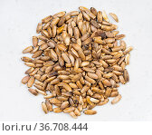 Top view of pile of whole milk thistle seeds close up on gray ceramic... Стоковое фото, фотограф Zoonar.com/Valery Voennyy / easy Fotostock / Фотобанк Лори