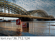 COLOGNE, GERMANY - FEBRUARY 4, 2021: High water on the river Rhine... Стоковое фото, фотограф Zoonar.com/Alexander Ludwig / easy Fotostock / Фотобанк Лори