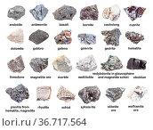 Set of various gray unpolished stones with names (galenite, hematite... Стоковое фото, фотограф Zoonar.com/Valery Voennyy / easy Fotostock / Фотобанк Лори