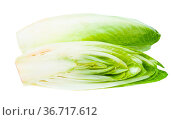 Cut Belgian endive (white Common chicory) isolated on white background. Стоковое фото, фотограф Zoonar.com/Valery Voennyy / easy Fotostock / Фотобанк Лори