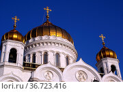 Golden domes of marble cathedral in Moscow, Russia. Стоковое фото, фотограф Zoonar.com/Valeriy Shanin / age Fotostock / Фотобанк Лори