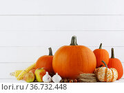 Harvested autumn food. Стоковое фото, фотограф Иван Михайлов / Фотобанк Лори