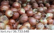 Bulb onion in a plastic box on counter in grocery store. Стоковое видео, видеограф Яков Филимонов / Фотобанк Лори