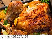 Garnished turkey. Popular dish of Catalan cuisine. Стоковое фото, фотограф Яков Филимонов / Фотобанк Лори