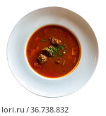 Traditional Russian delicious dish is a meat soup-goulash. Стоковое фото, фотограф Яков Филимонов / Фотобанк Лори