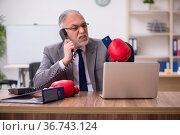 Old businessman employee holding credit card and wearing boxing. Стоковое фото, фотограф Elnur / Фотобанк Лори