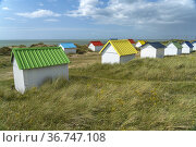 Colorful beach houses in the dunes on the beach at Gouville-sur-Mer... Стоковое фото, фотограф Peter Schickert / age Fotostock / Фотобанк Лори