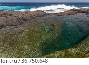 Gran Canaria, calm rock pools under steep cliffs of the north coast are separated from the ocean by volcanic rocks of platform constructed by old lava flows Punta de Galdar area. Стоковое фото, фотограф Tamara Kulikova / Фотобанк Лори