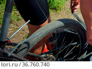 The trunk Bicycle, the trunk on the bike, repair bike racks. Стоковое фото, фотограф Zoonar.com/NadyZima_zimaveles / easy Fotostock / Фотобанк Лори