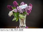 bouquet of different blooming spring lilacs in a vase on black background. Стоковое фото, фотограф Peredniankina / Фотобанк Лори
