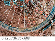 Dirty Bicycle wheel, dirt bike wheel. Стоковое фото, фотограф Zoonar.com/NadyZima_klgd / easy Fotostock / Фотобанк Лори