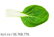 Green leaf of bok choy ( pak choi) Chinese cabbage isolated on white... Стоковое фото, фотограф Zoonar.com/Valery Voennyy / easy Fotostock / Фотобанк Лори