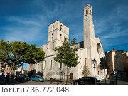 Kathedrale Notre-Dame-du-Bourguet, Forcalquier, Provence, Provence... Стоковое фото, фотограф Zoonar.com/Günter Lenz / age Fotostock / Фотобанк Лори