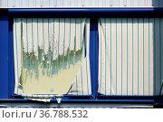 Zerrissene Stoffzuhänge an den Fenstern einer oberen Etage eines Geschäftsgebäudes... Стоковое фото, фотограф Zoonar.com/Bastian Kienitz / easy Fotostock / Фотобанк Лори