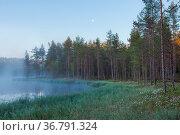 Foggy morning at forest pond landscape Finland. Стоковое фото, фотограф Zoonar.com/Juhani Viitanen / easy Fotostock / Фотобанк Лори