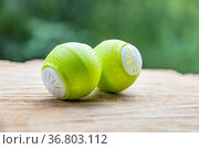 Bright green plastic ball for absorbing unpleasant odors in household... Стоковое фото, фотограф Zoonar.com/Alexey Lagutkin / easy Fotostock / Фотобанк Лори