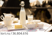 dairy products on table against the background of herd of cows in barn. Стоковое фото, фотограф Татьяна Яцевич / Фотобанк Лори