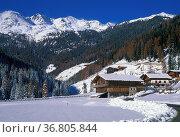 St. gertrude village, ultimo valley, italy. Стоковое фото, фотограф Danilo Donadoni / age Fotostock / Фотобанк Лори