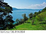 Bodensee, Überlinger See, bei Sipplingen, Blick Richtung Bodmann,... Стоковое фото, фотограф Zoonar.com/Jürgen Vogt / easy Fotostock / Фотобанк Лори
