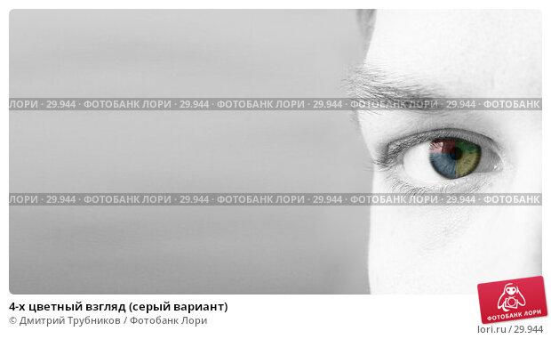 Купить «4-х цветный взгляд (серый вариант)», фото № 29944, снято 22 марта 2007 г. (c) Дмитрий Трубников / Фотобанк Лори