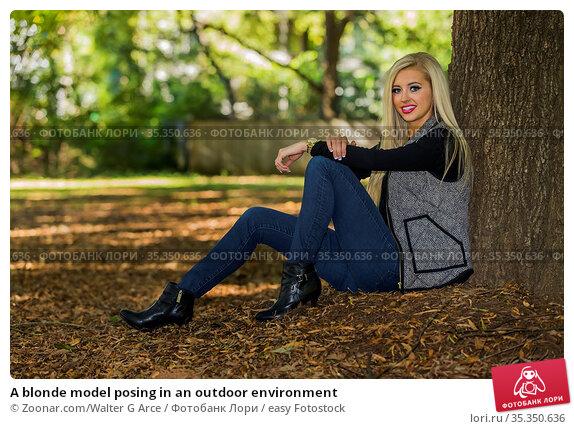 A blonde model posing in an outdoor environment. Стоковое фото, фотограф Zoonar.com/Walter G Arce / easy Fotostock / Фотобанк Лори